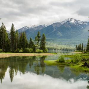 nature, tress, mountains, water